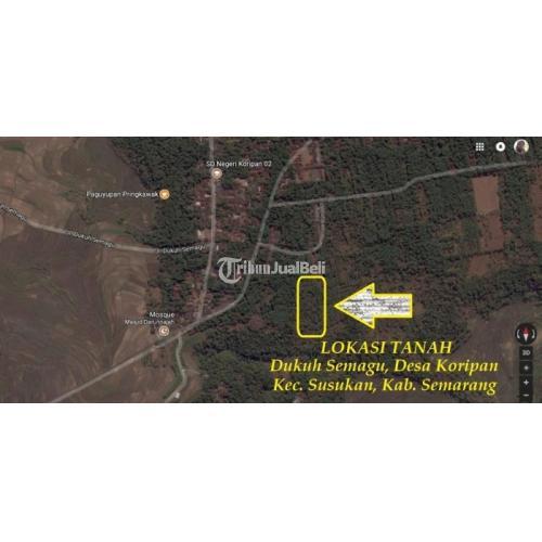 Dijual Tanah Perkebunan Produktif Kecamatan Susukan Murah Strategis - Kabupaten Semarang