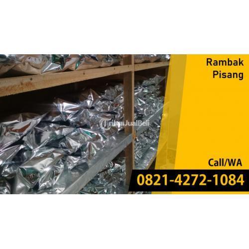 Pabrik dan Distributor Rambak Pisang Kualitas Premium - Malang