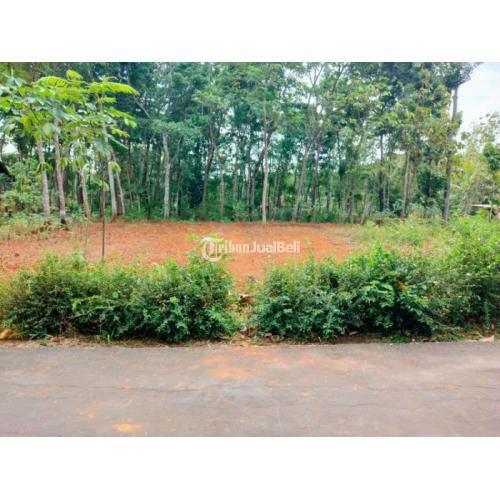 Dijual Tanah View Sawah Dekat Pasar Mojogedang - Karanganyar