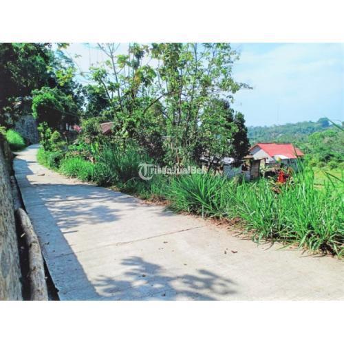 Dijual Tanah Kebun Durian Luas 500m² Karangpandan - Karanganyar