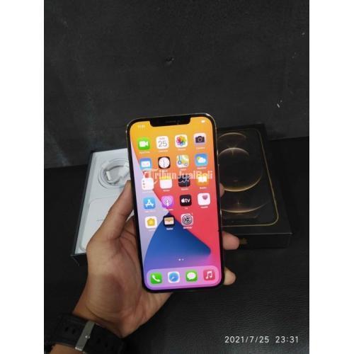 HP iPhone 12 Pro Max 256GB Gold Bekas iCoud Kosong Normal Garansi - Semarang