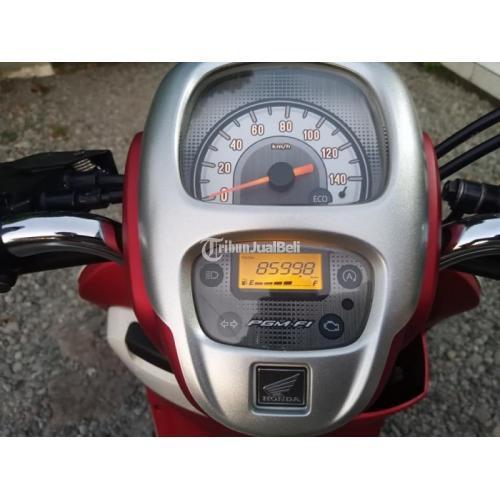 Motor Honda Scoopy 2020 Bekas Surat Lengkap Pajak Jalan Harga Nego - Jepara