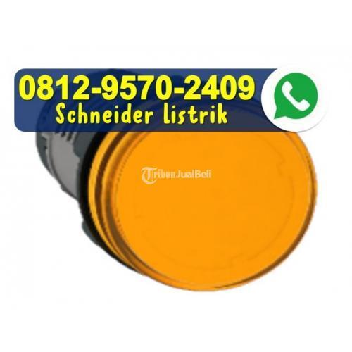 Schneider Pilot Light 22mm 220V AC Orange XA2EVM5LC - Jakarta Utara