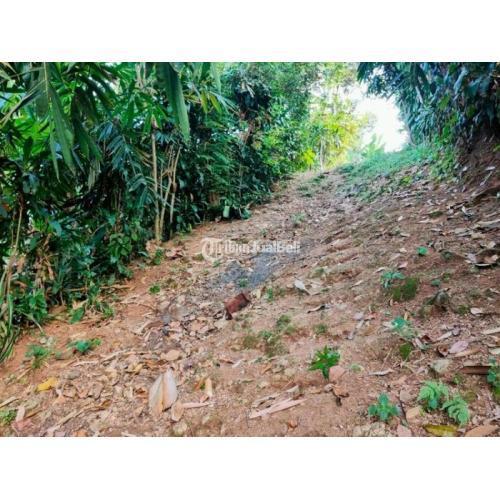Dijual Tanah 600m² Kontur Tanah Landai di Karangpandan - Karanganyar