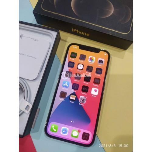 HP iPhone 12 Pro Gold 256GB Fullset Bekas Fungsi Normal Garansi - Semarang