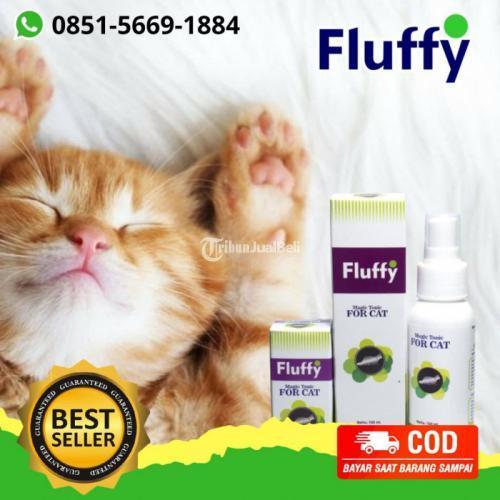 Promo Obat Kutu Kucing Fluffy Tonic - Depok