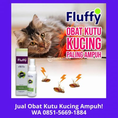 Fluffy Tonic Obat Kutu Kucing Paling Ampuh - Jakarta