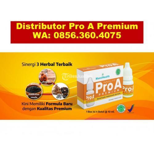 Distributor Obat Herbal Sakit Diabetes Propolis Pro A Premium - Sidoarjo