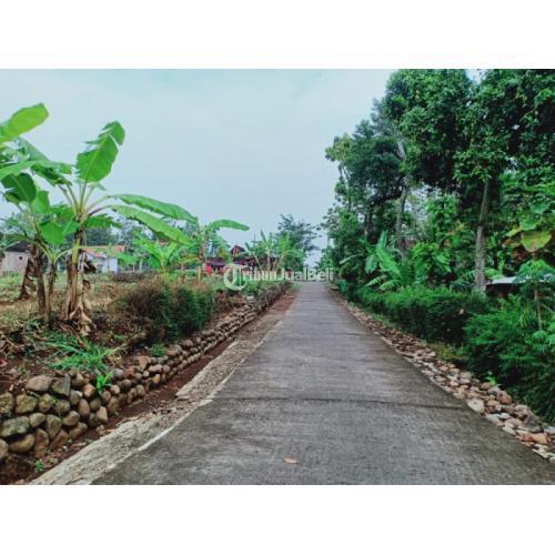 Dijual Tanah Datar Cocok Untuk Kavling Harga Nego di Sambirejo - Sragen